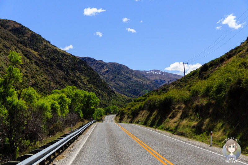 Fahrt entlang des Kawarau Gorge, Otago, Neuseeland
