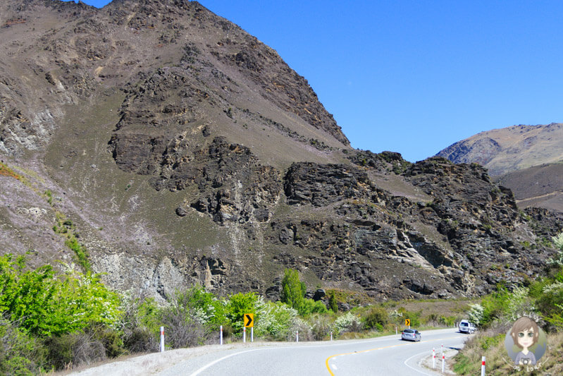 tolle Landschaft im Kawarau Gorge