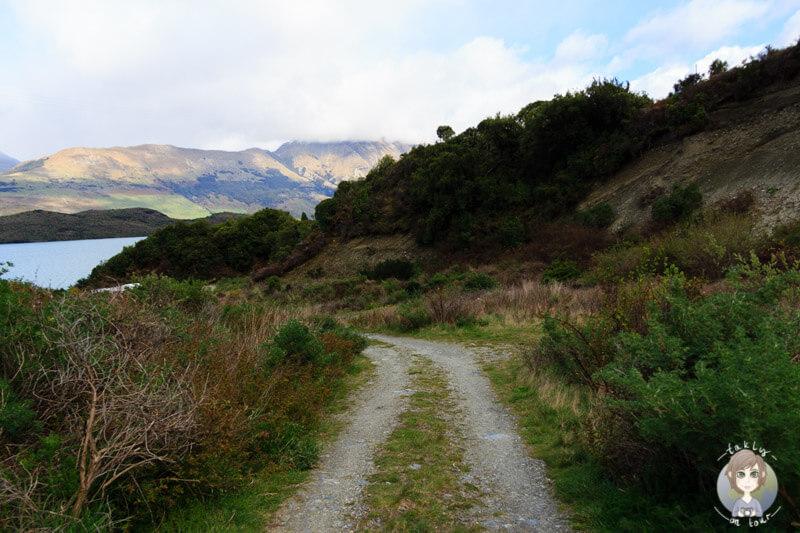 Lake Face Creek, Freedom Camping am Lake Wakatipu (4)