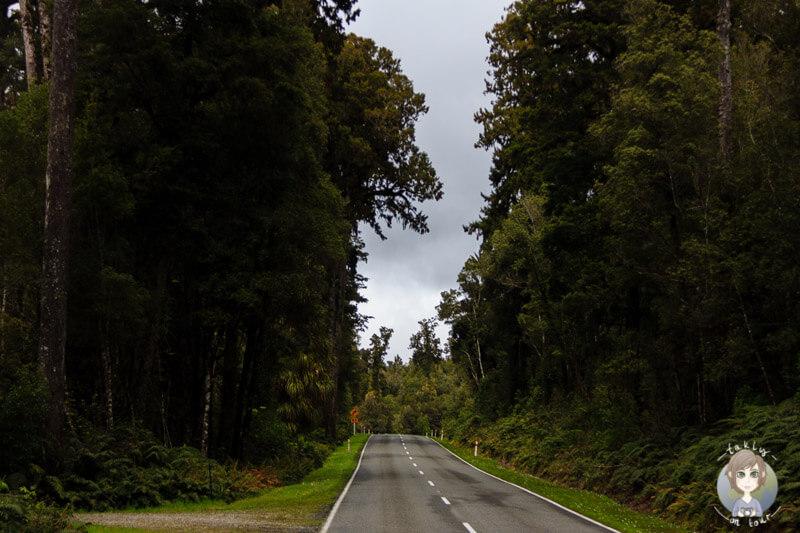 Lake Ianthe, Neuseeland (6)