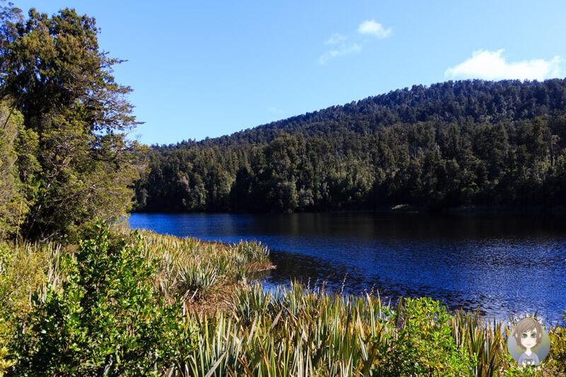 Blick auf den Lake Matheson