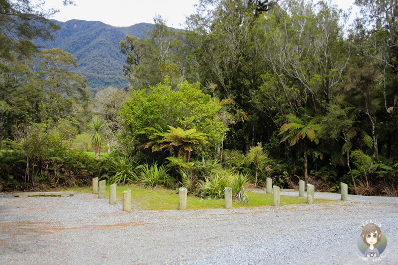 Lake Paringa DOC, Neuseeland (6)