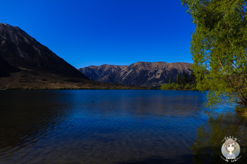 Der Lake Pearson am Morgen