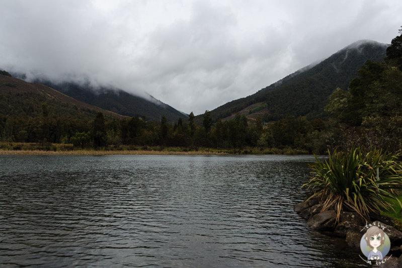 Blick auf den Lake Rotoroa