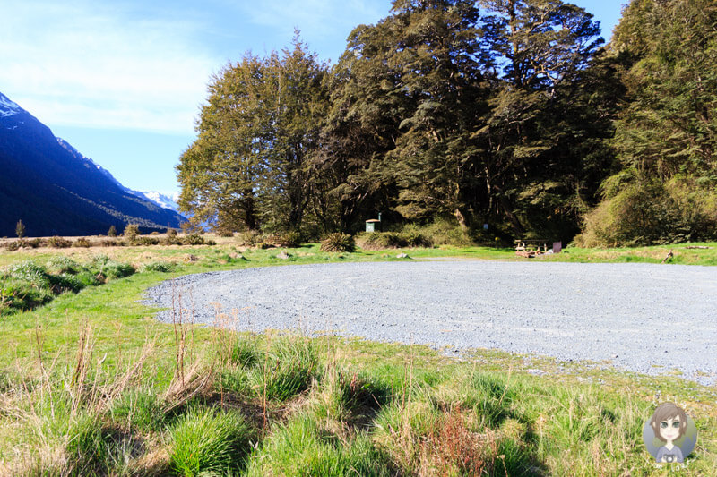 Mackay Creek DOC, Milford Road, Neuseeland (7)