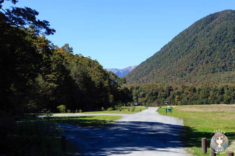 Marble Hill Campsite, West Coast (3)