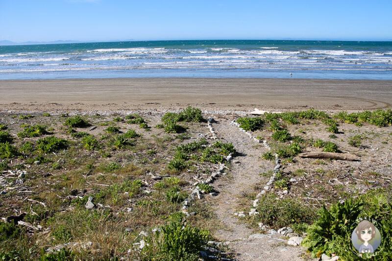 Marfells Beach DOC, Neuseeland (10)