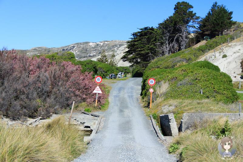 Marfells Beach DOC, Neuseeland (2)