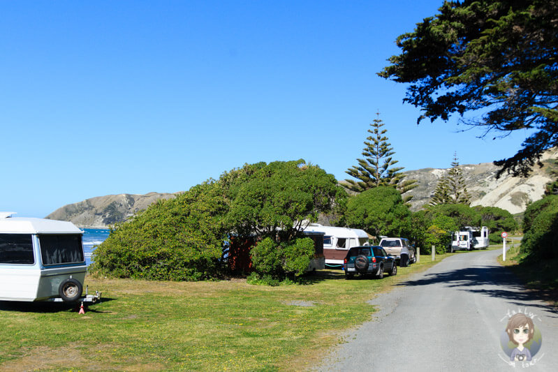 Marfells Beach DOC, Neuseeland (4)