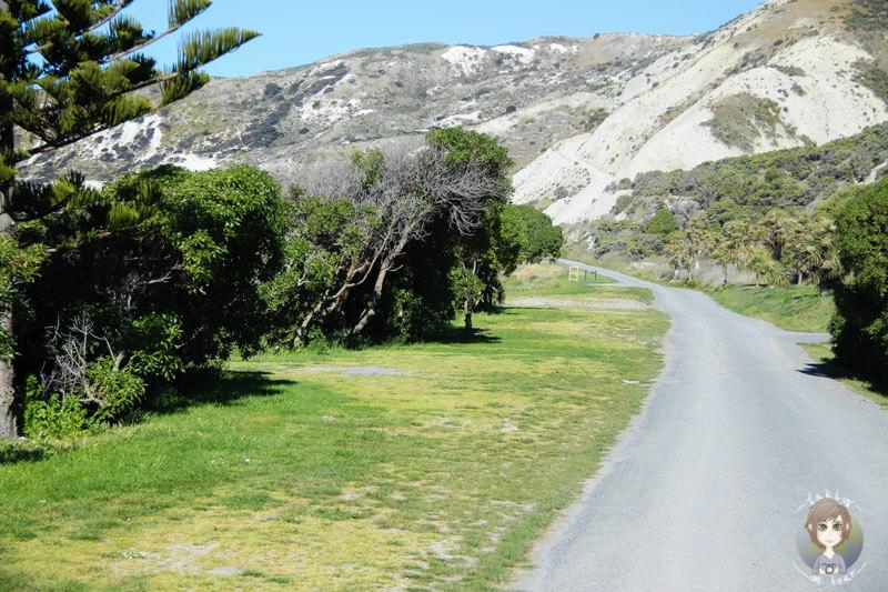 Marfells Beach DOC, Neuseeland (5)