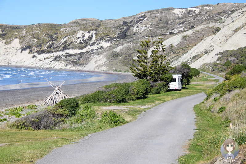 Stellplatz auf dem Marfells Beach DOC Campingplatz, Neuseeland
