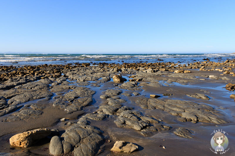 Marfells Beach, Marlborough, Neuseeland (4)