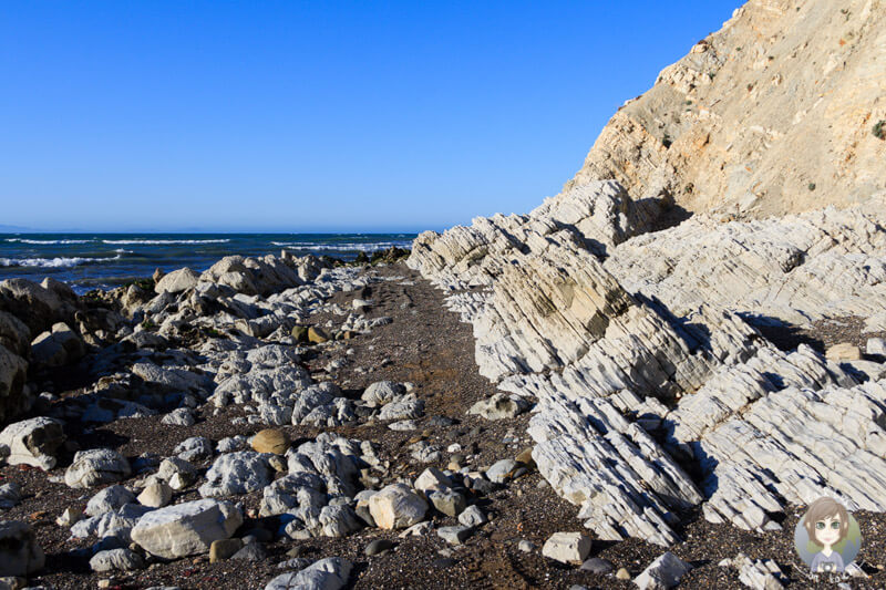 Marfells Beach, Marlborough, Neuseeland (6)