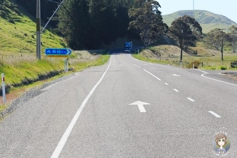 Marfells Beach Road, Neuseeland (2)