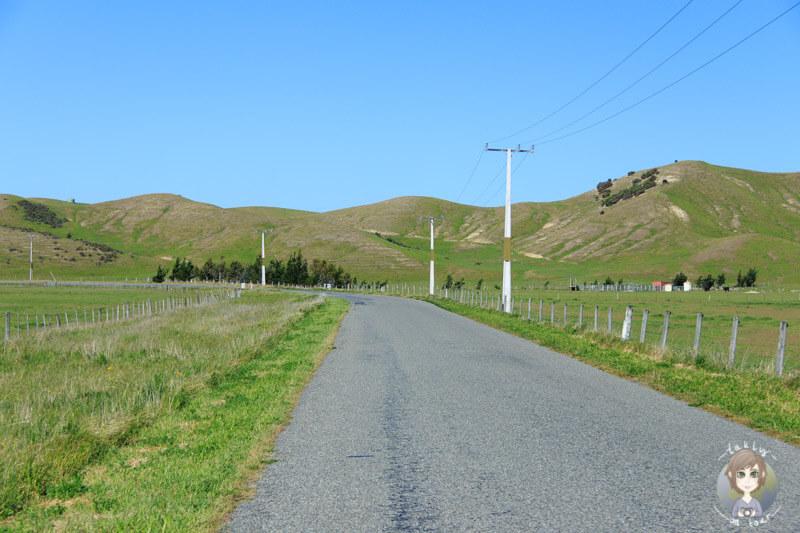 Marfells Beach Road, Neuseeland (3)