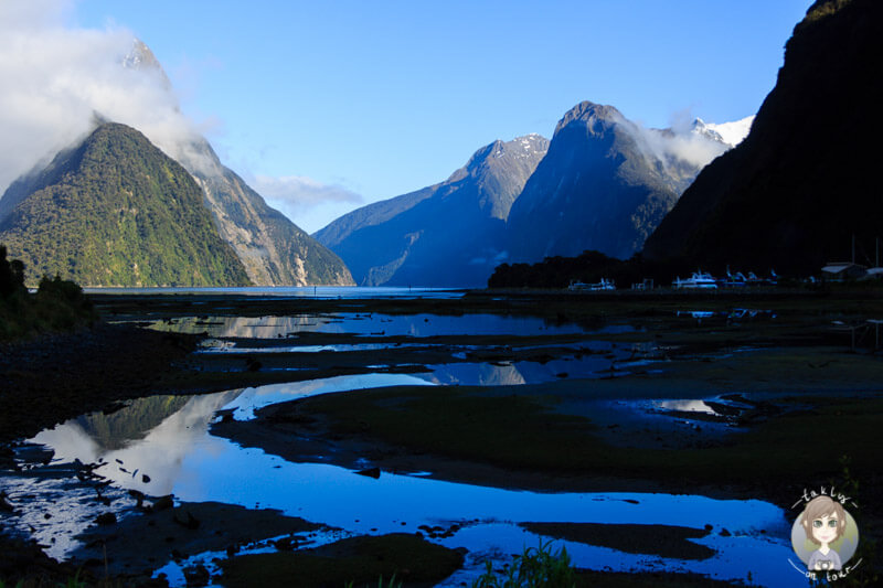 Milford Sound am Morgen