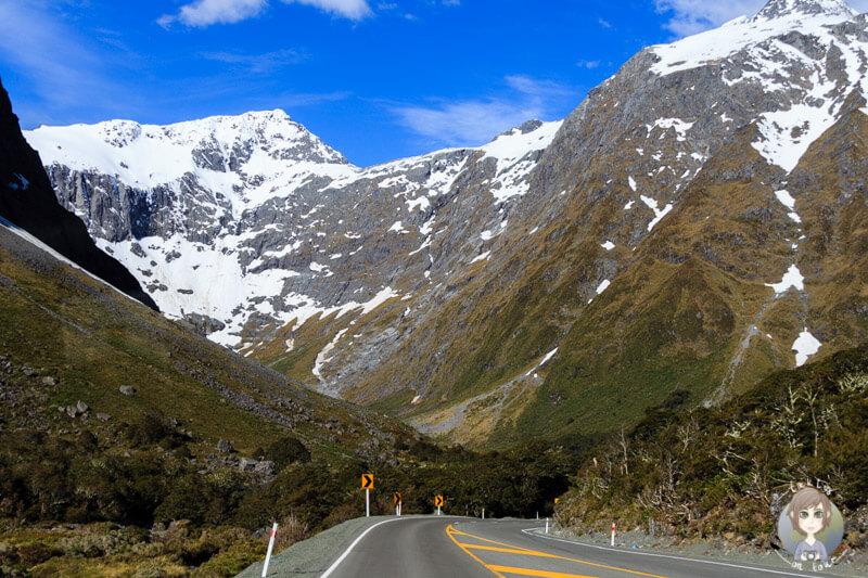 Milford Sound Highway, Fiordland National Park (2)