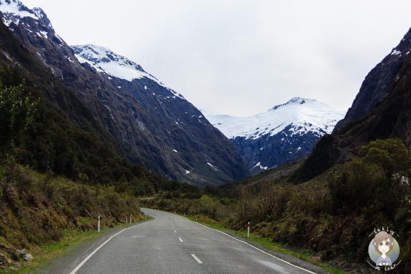 Milford Sound Highway, Fiordland National Park (4)