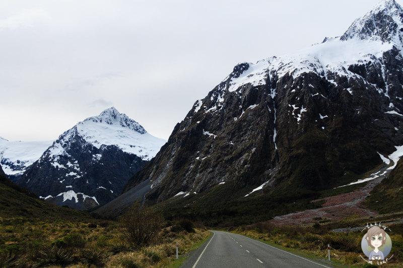 Milford Sound Highway, Fiordland National Park (6)