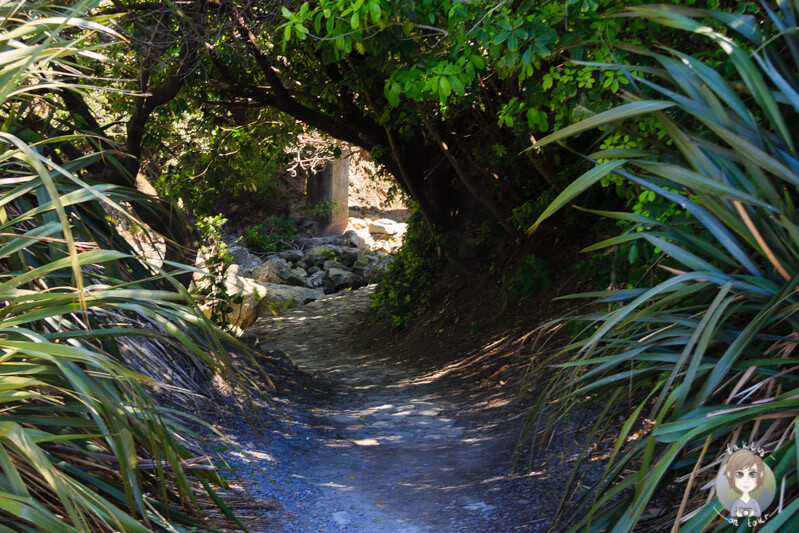 Ohau Stream Walk, Marlborough, Neuseeland