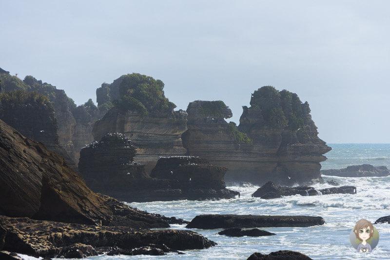 Die Pancake Rocks in Punakaki