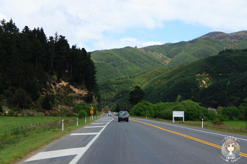 Fahrt durch Picton, Neuseeland