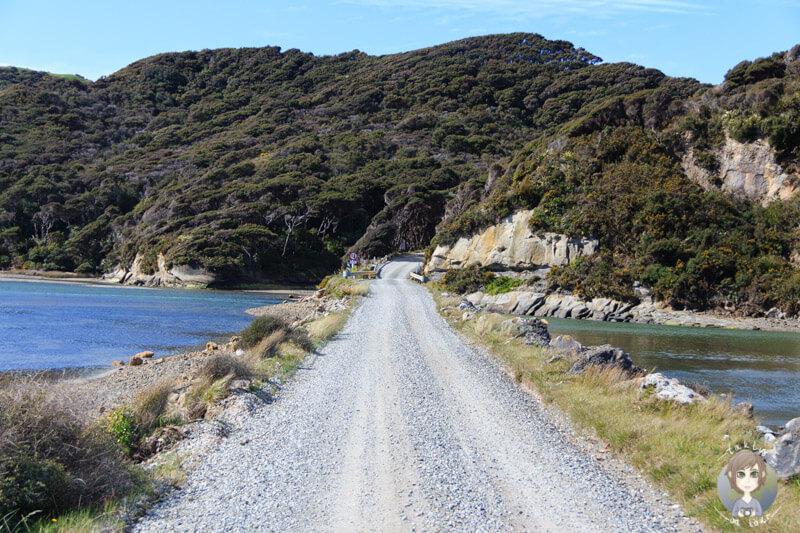 Puponga, Neuseeland (1)