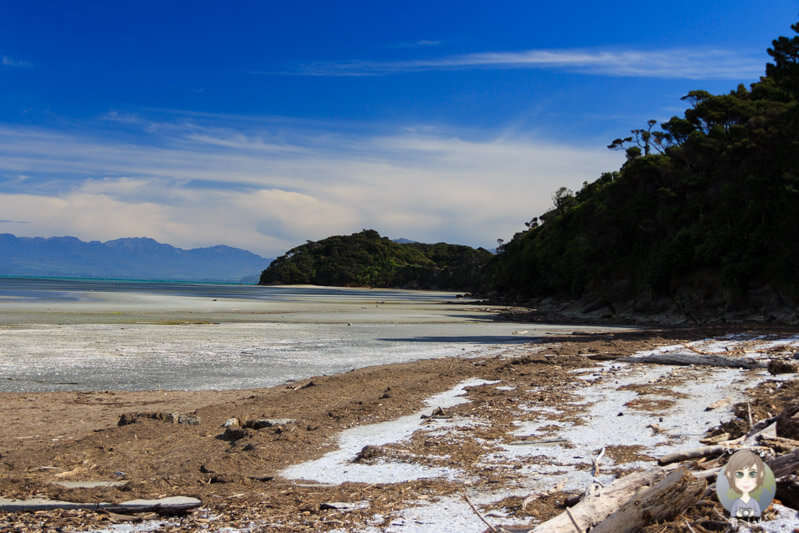 Puponga, Neuseeland (2)