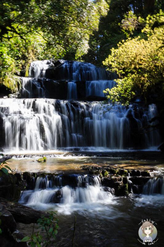 Purakaunui Falls, Neuseeland (1)