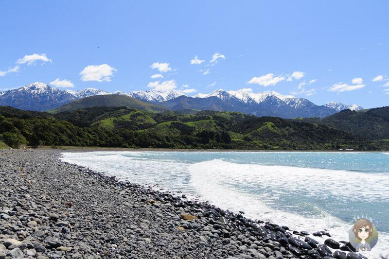 Das Meer nördlich von Kaikoura