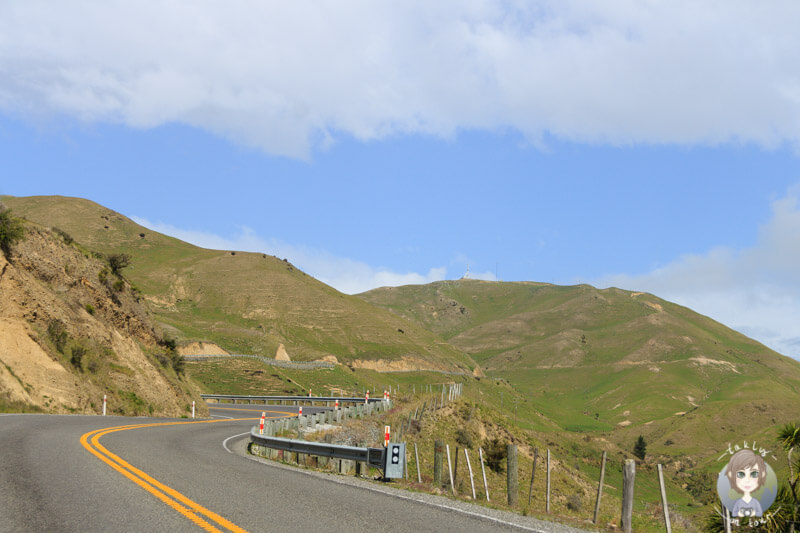 Region Marlborough, Neuseeland (3)