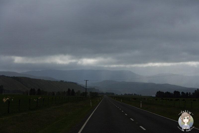 Region Tasman, Neuseeland (3)