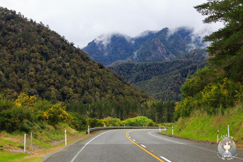 Fahrt über den SH6, Tasman