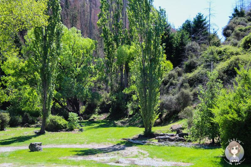 Roaring Meg Recreation Reserve, Otago (3)