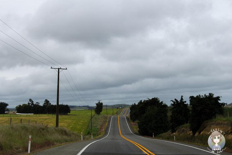 Fahrt über den SH1 in Neuseeland