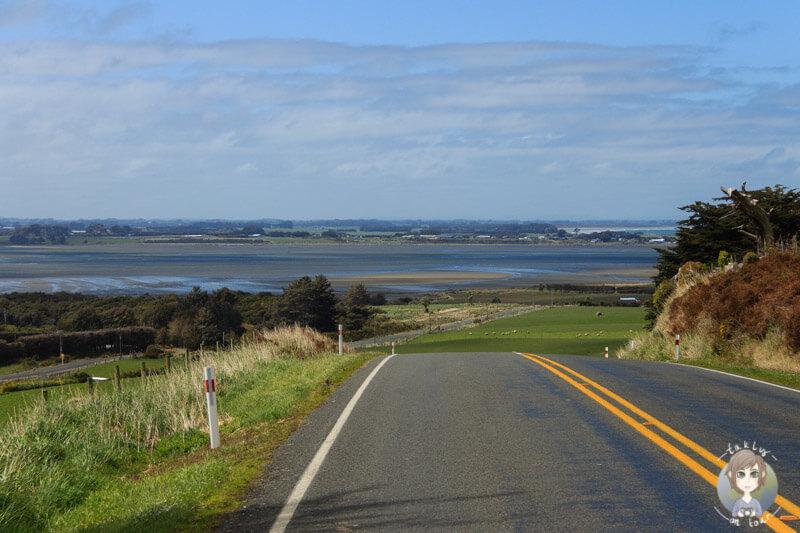 SH99 in Southlan, Neuseeland