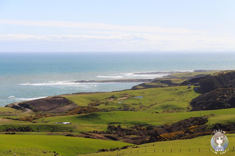Slope Point, Neuseeland (2)