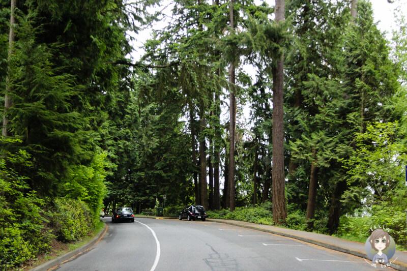 Stanley Park Vancouver (2)
