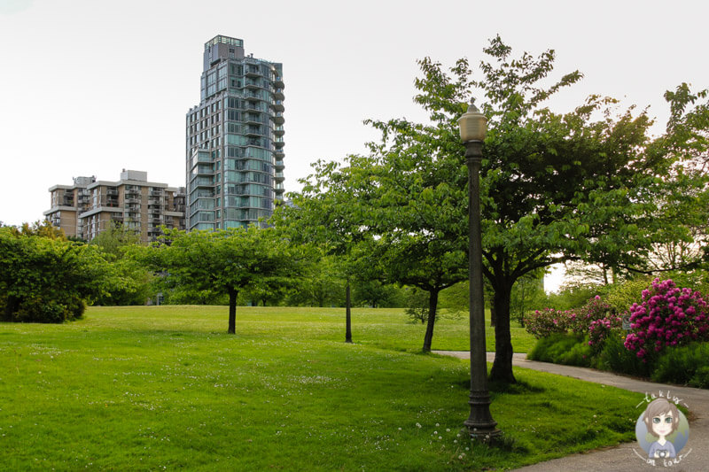 Stanley Park in Vancouver (1)