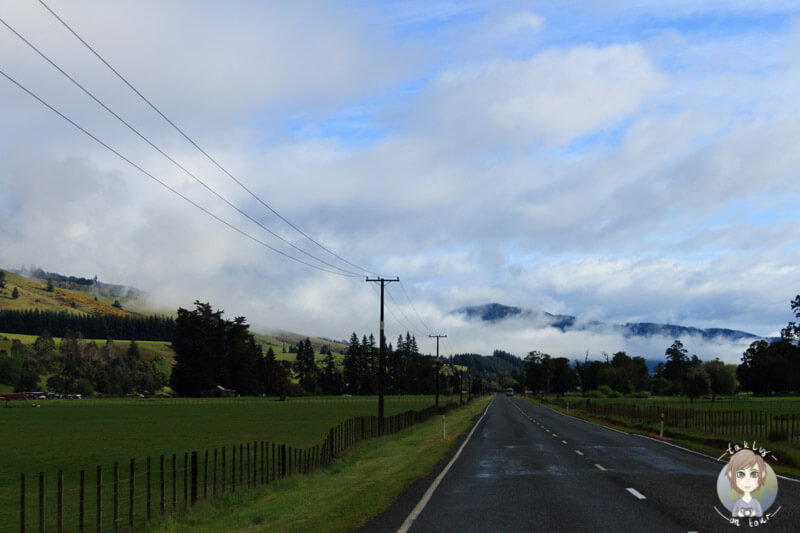 Fahrt Richtung Nelson