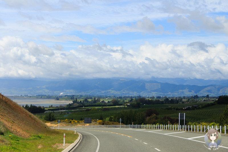 Tasman, Neuseeland (3)