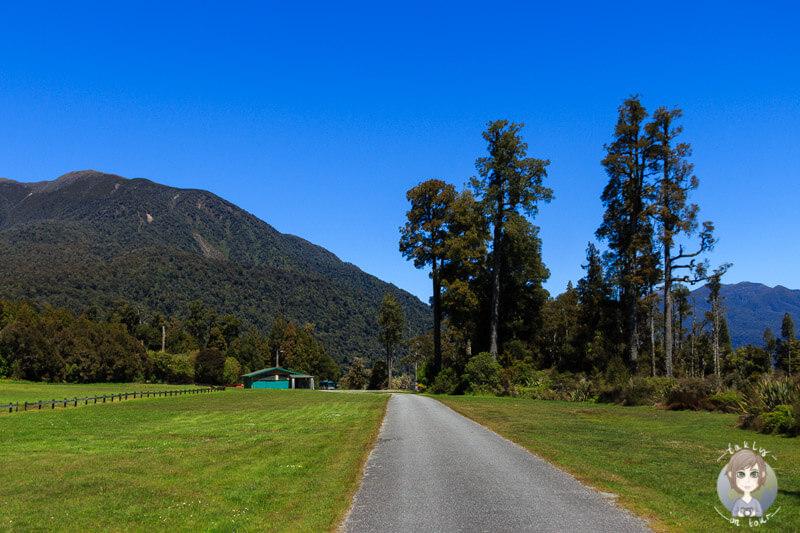Te King Freedom Campingplatz, West Coast, Neuseeland (2)