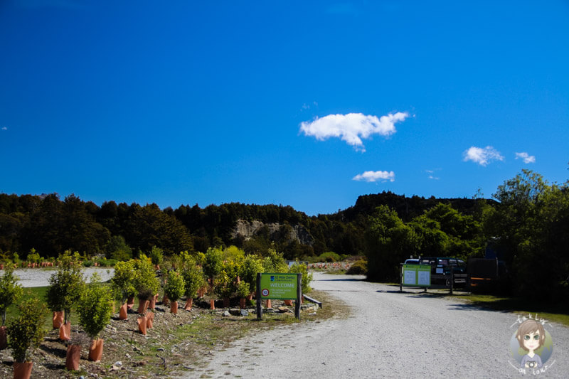 Twelve Mile Delta DOC Campground am Lake Wakatipu (4)