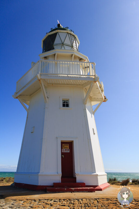 The Waipapa Point Lighthouse in the Catlins