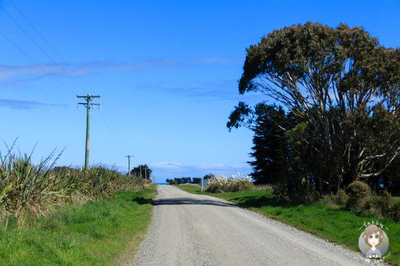 Fahrt durch Otara zum Waipapa Point in Neuseeland