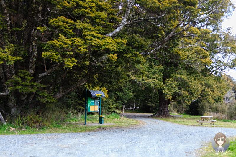 Walker Creek Campingplatz in der Nähe des Milford Sound
