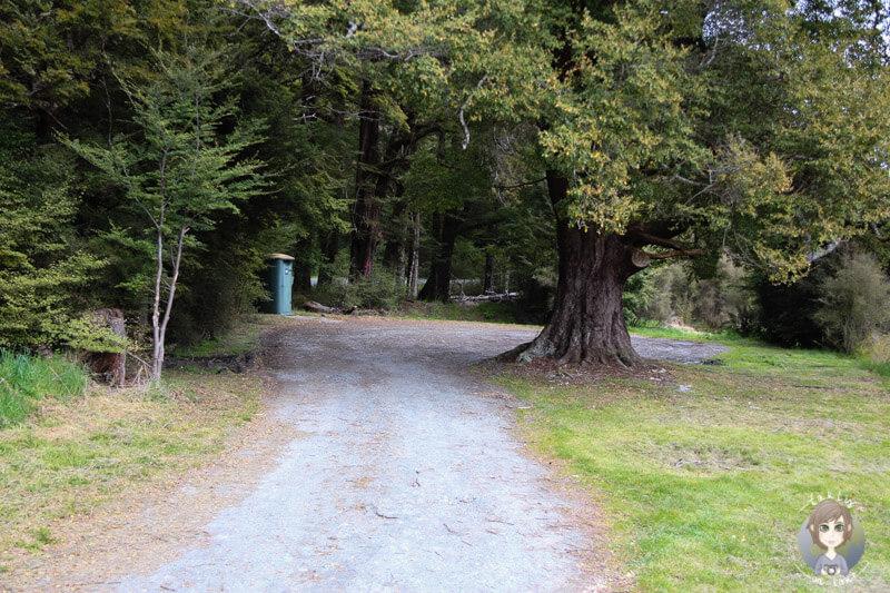 Camping in der Nähe vom Milford Sound