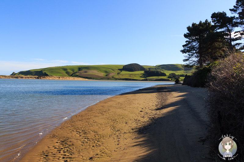 Weir Beach, Haldane, Neuseeland (1)