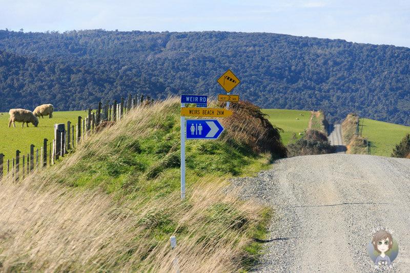 Weir Beach Road, Haldane, Neuseeland (2)