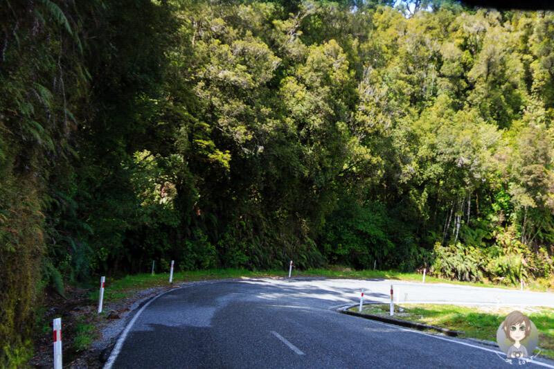 kurvige Straßen in Neuseeland